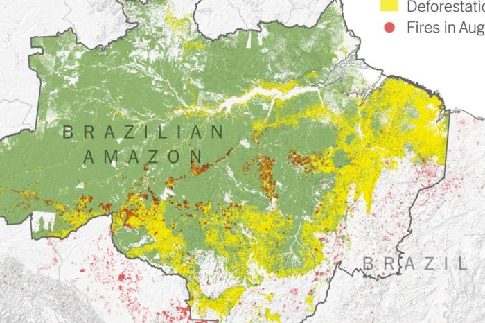 Satellite Imagery Tells a Different Story about the Amazon Rainforest Fires