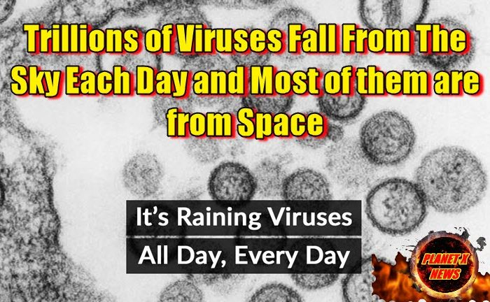 Trillions of Viruses Fall From the Sky Each Day and Most of them are from Space